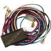 Hotpoint TCM65A Wiring Loom Module