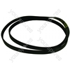 Ariston 'belt Poly-v L= 1310/1288j5'