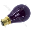Black light bulb, ES, 75W